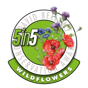 5in5wildflowers2018-300-1